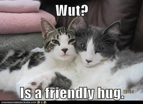 Wut?  Is a friendly hug.