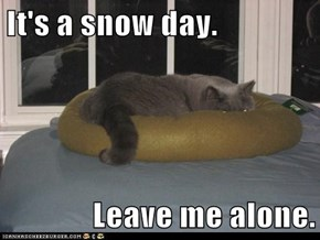 It's a snow day.  Leave me alone.