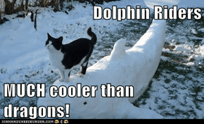 Dolphin Riders  MUCH cooler than dragons!