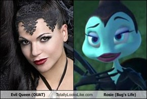 Evil Queen (OUAT) Totally Looks Like Rosie (Bug's Life)