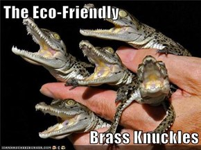 The Eco-Friendly  Brass Knuckles