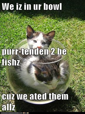 We iz in ur bowl purr-tenden 2 be fishz cuz we ated them allz