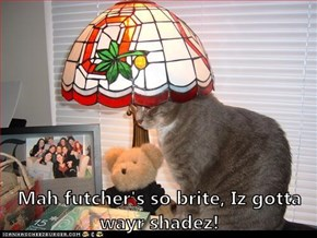 Mah futcher's so brite, Iz gotta wayr shadez!
