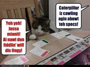 Ef we werkt fur cats!
