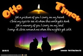 A Monday Night Candle For Our Beloved Departed FurFriends, And For Those Who Still Need Us Here