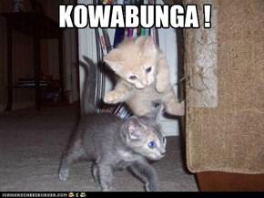 KOWABUNGA !