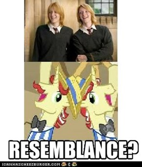 RESEMBLANCE?