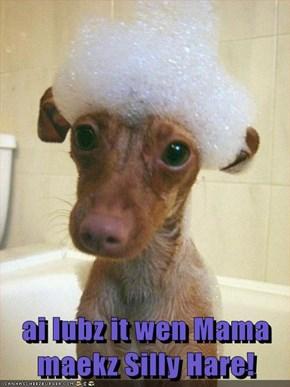 ai lubz it wen Mama maekz Silly Hare!