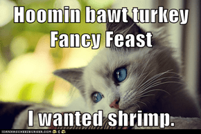 Hoomin bawt turkey Fancy Feast  I wanted shrimp.