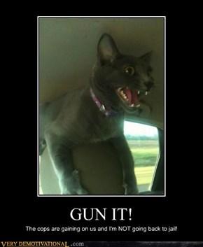GUN IT!