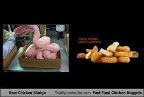 Raw Chicken Sludge Totally Looks Like Fast Food Chicken Nuggets