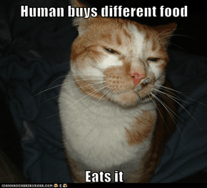 Human buys different food  Eats it