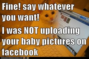 Fine! say whatever you want!  I was NOT uploading your baby pictures on facebook