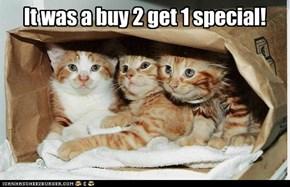 It was a buy 2 get 1 special!