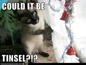 COULD IT BE  TINSEL?!?