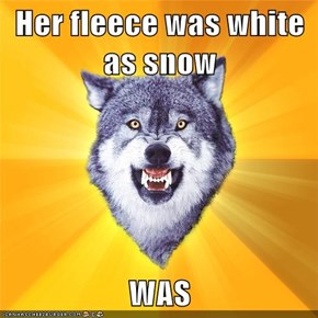 Her fleece was white as snow  WAS