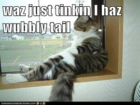 waz just tinkin I haz wubbly tail