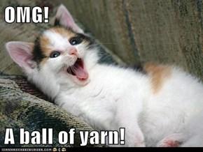 OMG!  A ball of yarn!