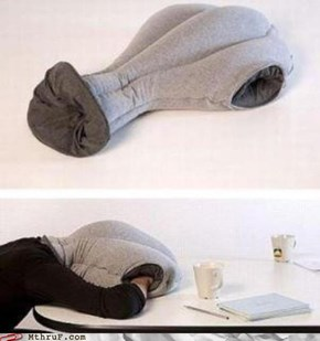Office Swag: Sleeping at the Office Has Never Been Easier!