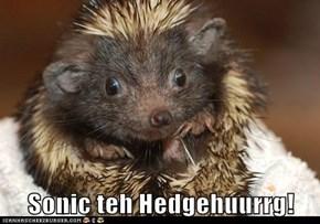 Sonic teh Hedgehuurrg!