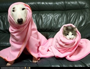 Goggies R Owr Friends: Pretty in Pink