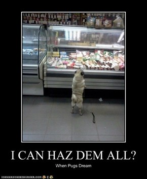 I CAN HAZ DEM ALL?