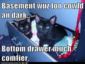 Basement wuz too cowld an dark..  Bottom drawer much comfier.