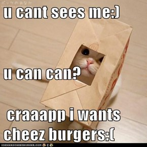 u cant sees me:)  u can can?  craaapp i wants cheez burgers:(