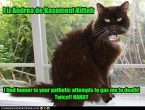 I iz Andrea de Basement Kitteh