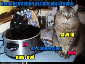 Demonstrashun of Concept Kittehs: