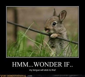 HMM...WONDER IF..
