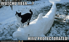 WUTCHU MEEN.....?  HIMZ PROTECTORATED!