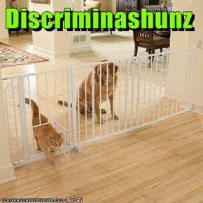 Discriminashunz
