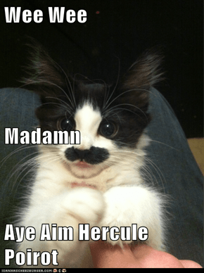Wee Wee Madamn Aye Aim Hercule Poirot