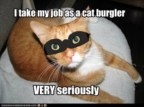 I take my job as a cat burgler