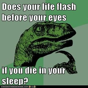 Does your life flash before your eyes   if you die in your sleep?