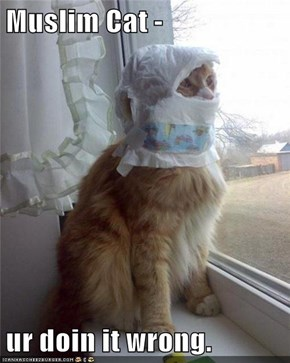 Muslim Cat -  ur doin it wrong.