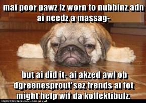 mai poor pawz iz worn to nubbinz adn ai needz a massag-   but ai did it- ai akzed awl ob dgreenesprout'sez frends ai fot might help wif da kollektibulz.