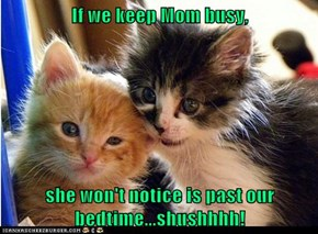 If we keep Mom busy,  she won't notice is past our bedtime...shushhhh!