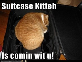 Suitcase Kitteh   Is comin wit u!