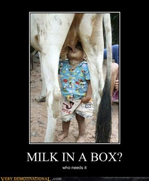 MILK IN A BOX?