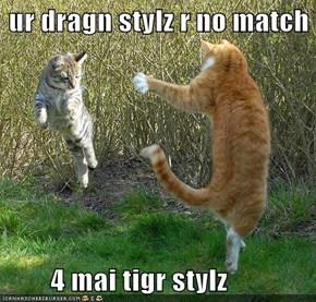 ur dragn stylz r no match          4 mai tigr stylz