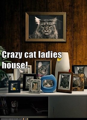 Crazy cat ladies house!