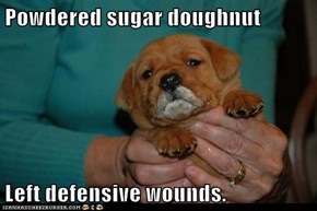 Powdered sugar doughnut