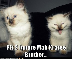 Plz 2 Ignore Mah Krazee Bruther…