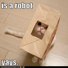 is a robot  yays.
