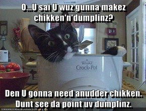 O...U sai U wuz gunna makez chikken'n'dumplinz?  Den U gonna need anudder chikken. Dunt see da point uv dumplinz.