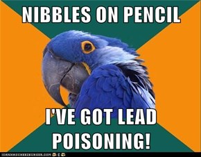 Paranoid Parrot: I Can Feel My Kidneys Failing!