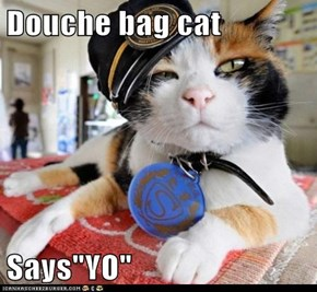 "Douche bag cat   Says""YO"""
