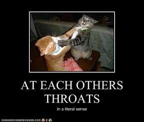 AT EACH OTHERS THROATS